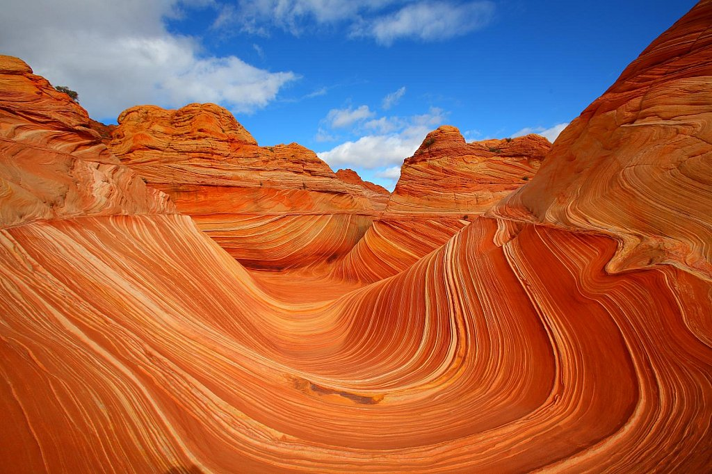 Tourism The Wave Coyote Buttes