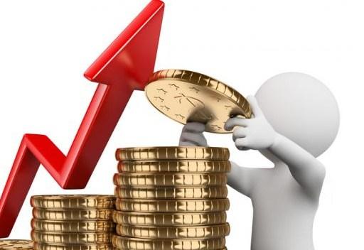 Tips Investasi Pemula Mekar