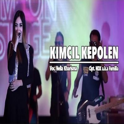 Koleksi Lagu Nella Kharisma Special NDX AKA  Mp3