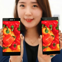 LG has introduced a 5.3-inch display with a record-thin frame