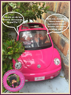 voiture monchhichi kiki papy mamie may grand mère père tortue kiki planet singe peluche vintage