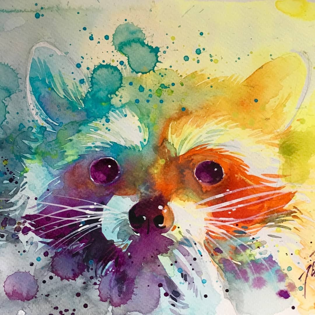 06-Raccoon-Tilen-Ti-Paintings-of-Animals-with-Splashes-of-Paint-www-designstack-co