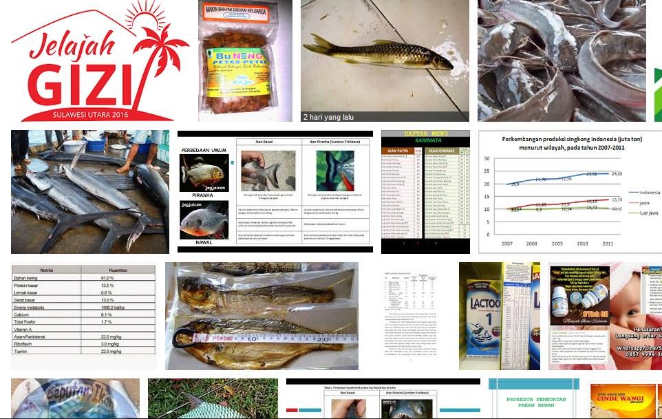 pengertian budidaya ikan air tawar