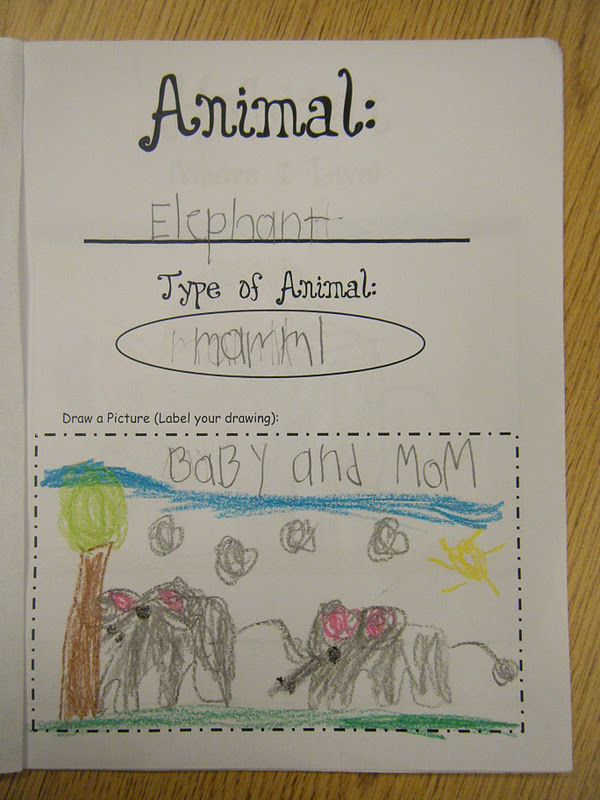 Ms M\u0027s KG Class Kindergarten Informational Non-Fiction Report Writing