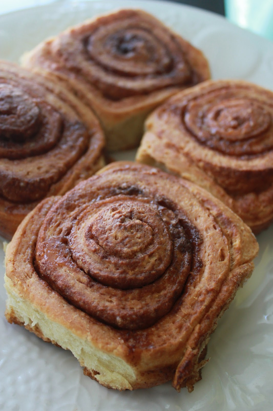 Squirrels N Sweets America S Test Kitchen Cinnamon Buns