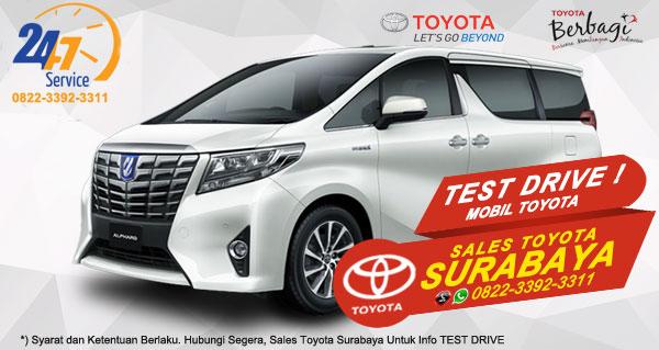 Info Test Drive Toyota Alphard Hybrid Surabaya