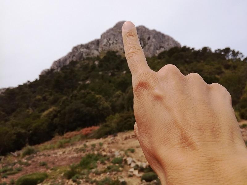 Puig de Galatzó - Mallorca