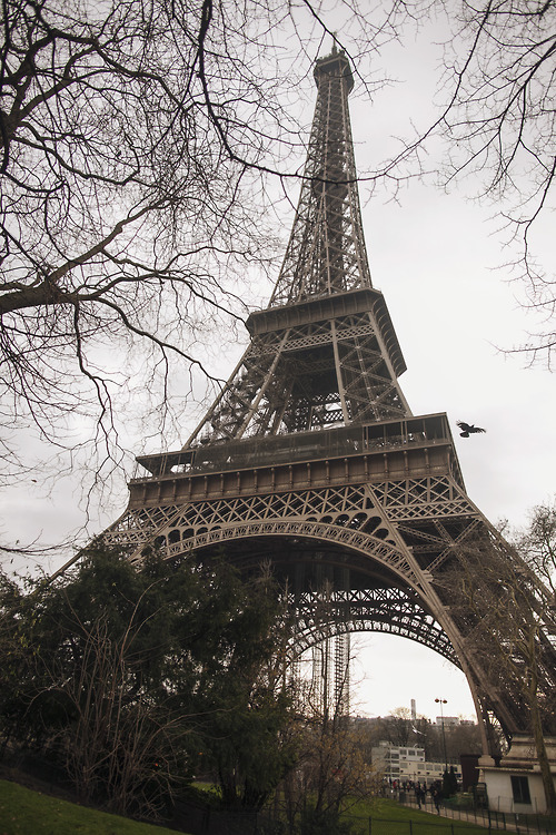 Paris Tumblr free download wallpaper