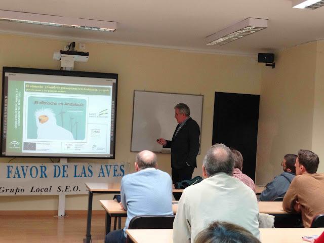 Conferencia: El Alimoche en Andalucía atrapado por el veneno y los parques eólicos. Por Rafael Arenas González, 7 de Marzo 2017. Grupo Local SEO-Sevilla.