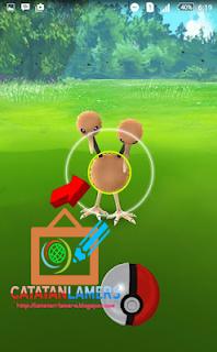 Solusi Atasi Hang/Stuck Setelah Menangkap Pokemon di Pokemon Go