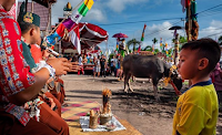 Tahukah Anda, 6 Tradisi Ini Hanya Ada Di Indonesia - Upacara Kasada Salah Satunya