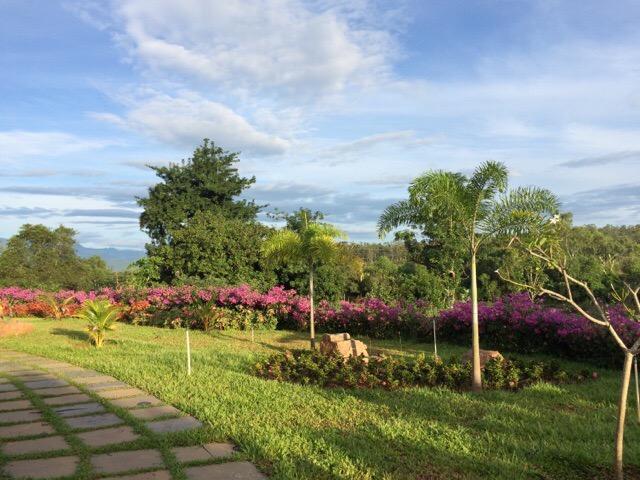 Sivananda Ashram Madurai Gardens