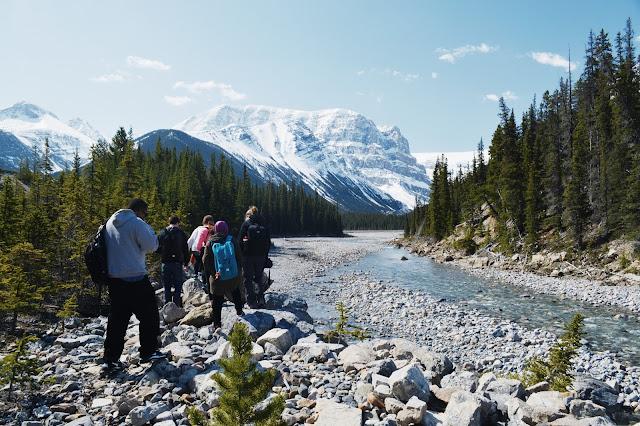 Hiking Trip to Stutfield Glacier, Jasper National Park, Alberta, Canada
