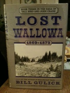 Lost Wallowa (Saga of Tall Bird and John Crane, Book 3), Gulick, Bill
