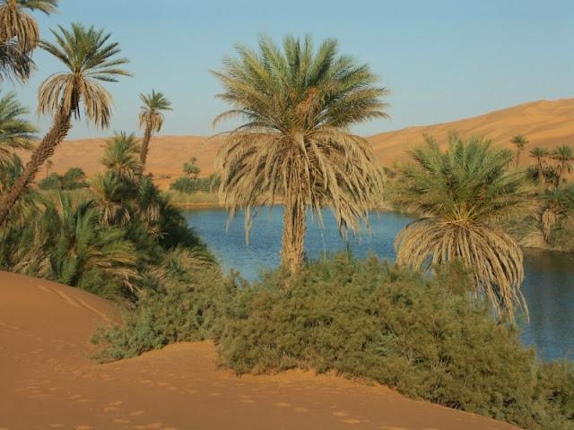 http://3.bp.blogspot.com/-fE0KtxPzR-Y/VH5aMCmocNI/AAAAAAAAEZ8/VBHKqq-K5DQ/s1600/oase_kathy_libyen.jpg