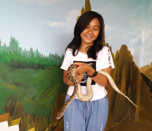 Kenalkan Keanekaragaman Hayati, LP2LH Gelar Animals Exhibition and Gathering