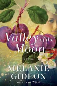 https://www.goodreads.com/book/show/30008681-valley-of-the-moon?from_search=true