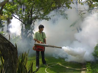 Kiểm soát côn trùng tại Quảng Ninh