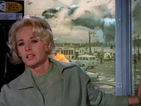 Melanie Sanders (Tippi Hebren) en la cabina telefónica de Los pájaros - Cine de Escritor
