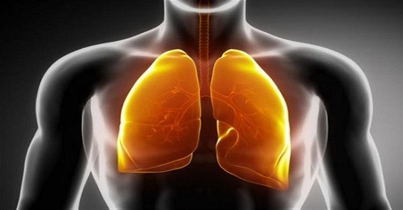 Os alimentos mais eficientes para limpar seus pulmões (com base em pesquisas)