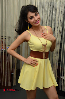 Actress Manisha Kelkar Latest Picture Gallery in Yellow Short Dress  0086.JPG