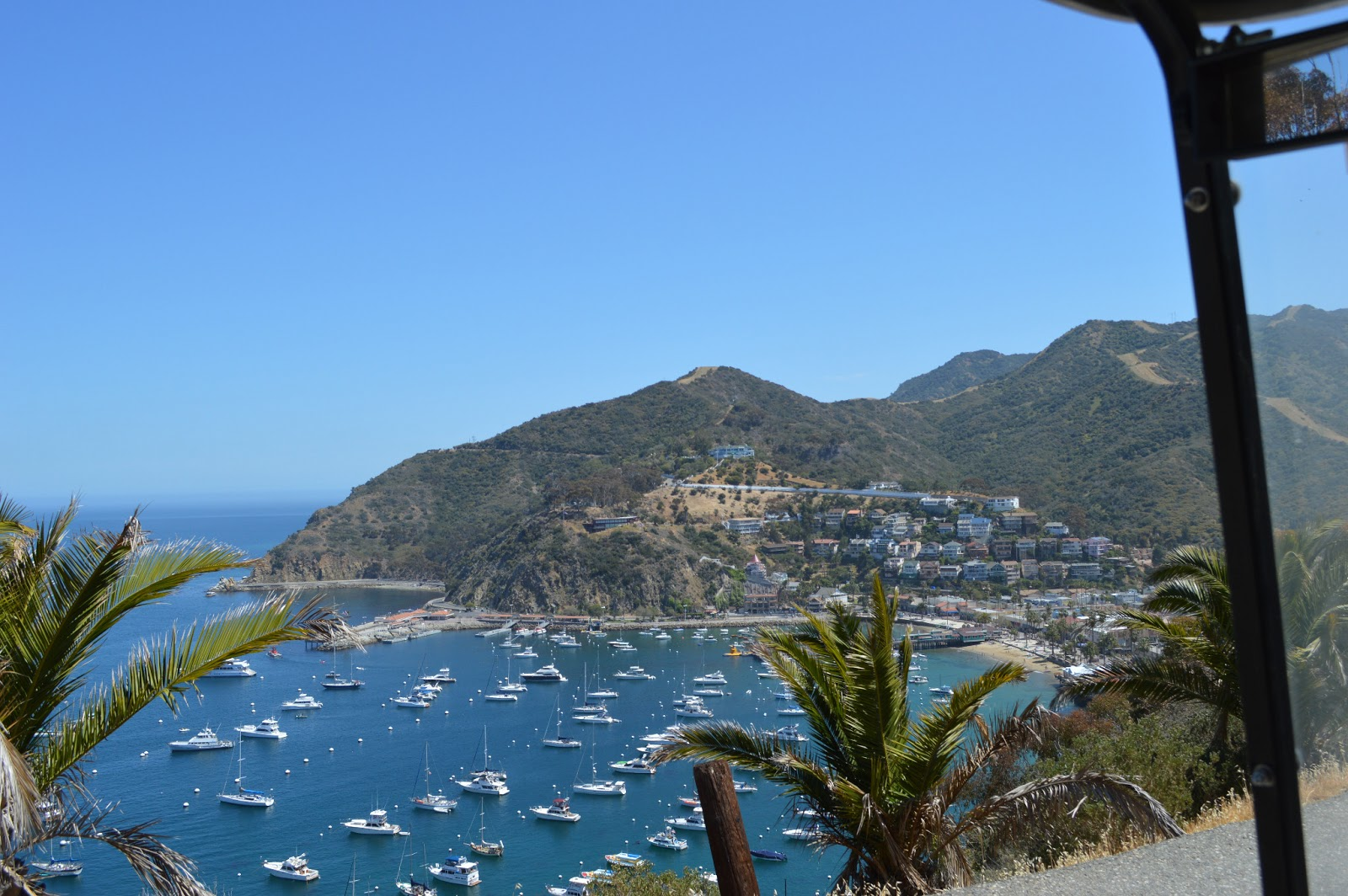 Our Little Life 5 Anniversary Trip Catalina Island