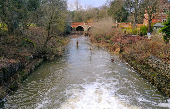 River Colne at North Mymms Park on 29 December 2017  Image by the North Mymms History Project Released under Creative Commons BY-NC-SA 4.0
