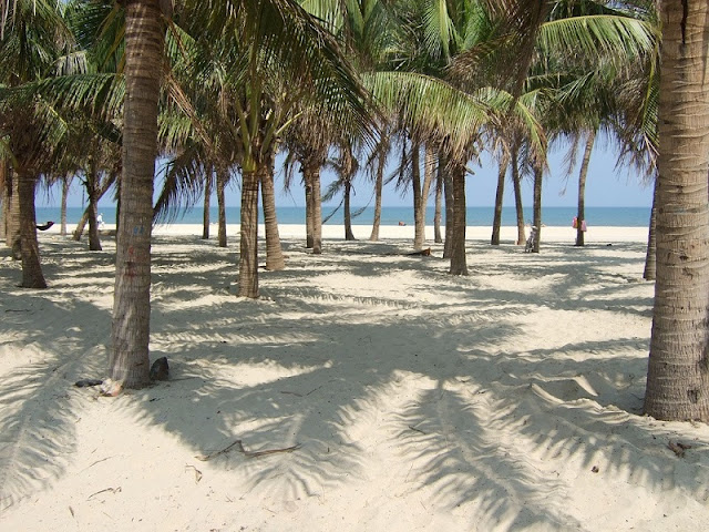 Top beaches highly appreciated by foreign tourists in Vietnam 4