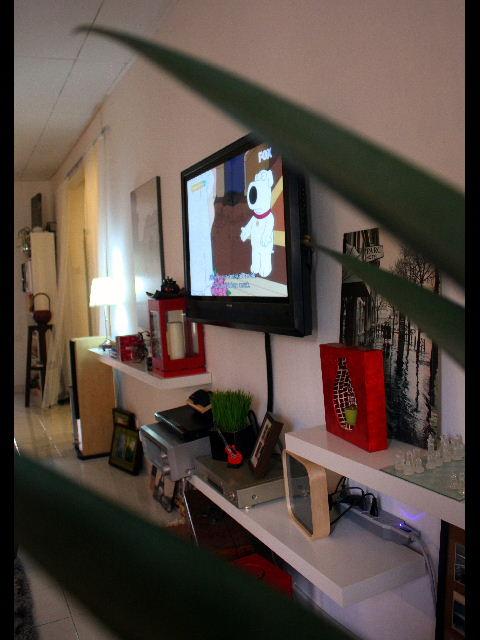 Daripada Menggunakan Kabinet Tv Saya Memilih Untuk Ikea Wall Shelf Bagi Memberikan Kelainan Di Ruang Menonton