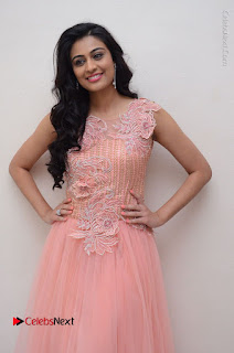 Actress Neha Hinge Stills in Pink Long Dress at Srivalli Teaser Launch  0044.JPG