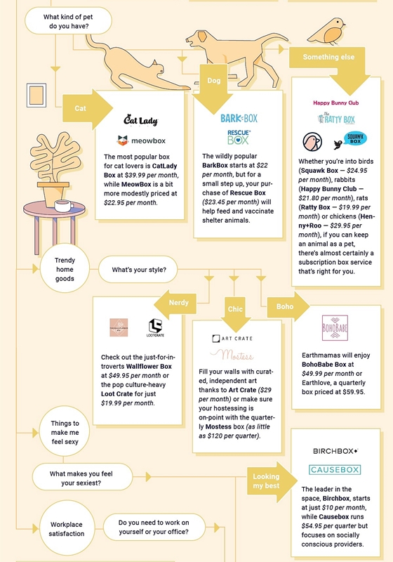 Which Subscription Box Is Right For Me, Subscription Box, Infographic, muchneeded.com