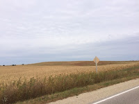 Iowa Fields