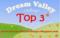Top 3 at dream Valley!