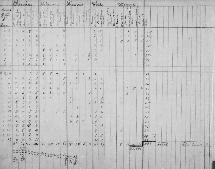 My Ancestor's Name: Exploring the Cherokee 1890 Census