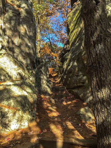 The spur trail up to the perch at Castle Mound