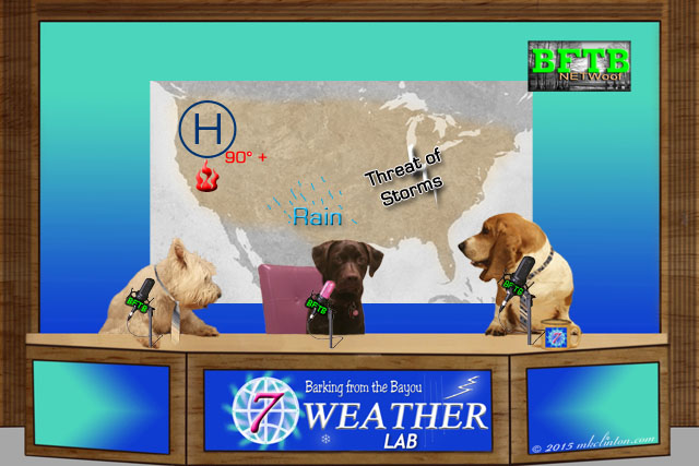 BFTB NETWoof Weather presented by our Weather Lab, Paisley