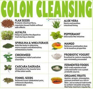 Colon Cleanse Diet Data and Recommendations