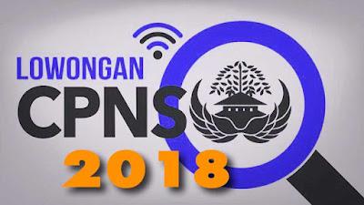 Formasi dan Lokasi Tes CPNS 2018 Provinsi Lampung