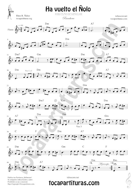 Flauta Travesera, flauta dulce y flauta de pico Partitura de Ha vuelto el Ñolo Sheet Music for Flute and Recorder Music Scores