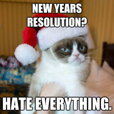 New Year Resolution Cat Memes