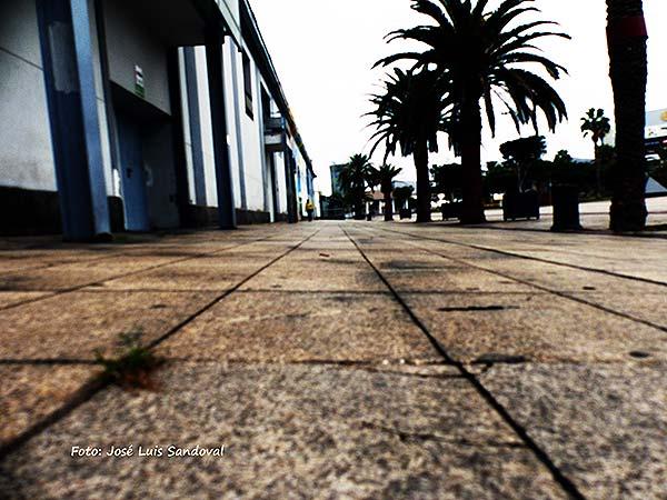 Lamentable estado abandono de zonas parque Santa Catalina suelos sucios