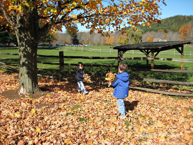 Boys playing in the leaves on our trip to Vermont