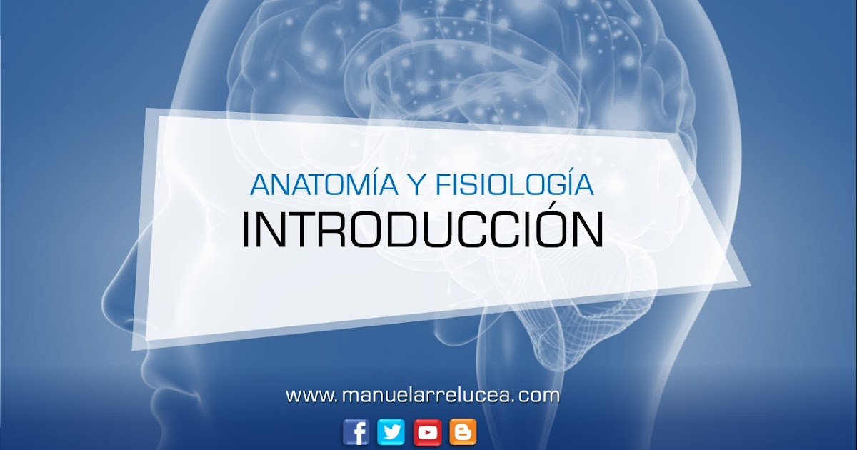 Anatomía y Fisiología: RESUMEN DE INTRODUCCIÓN A LA ANATOMÍA