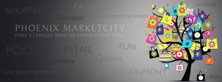 Makar Sankranti 2013 Kites Patang High Resolution Facebook Cover