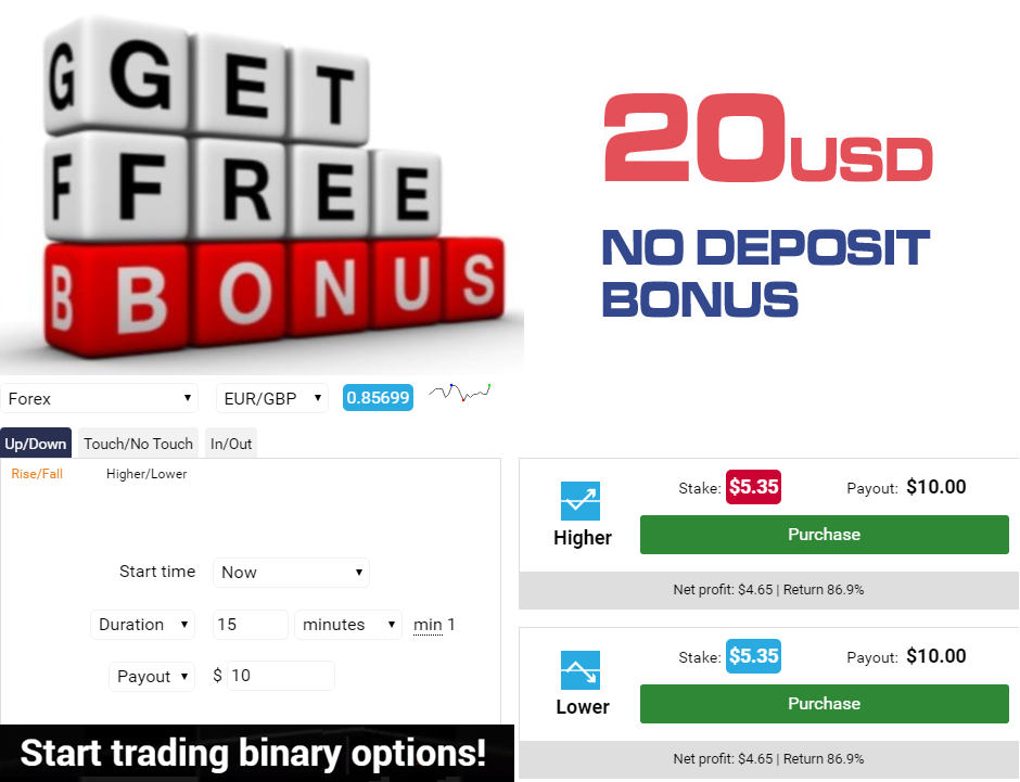Binary options no deposit bonus august 2014