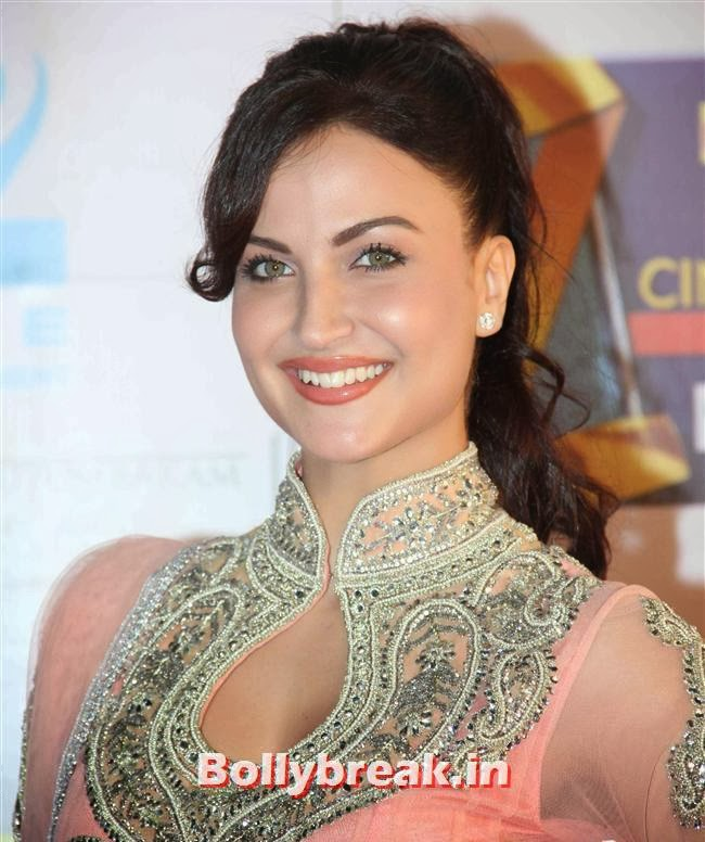 Elli Avram, Zee Cine Awards 2014 Red Carpet Pics