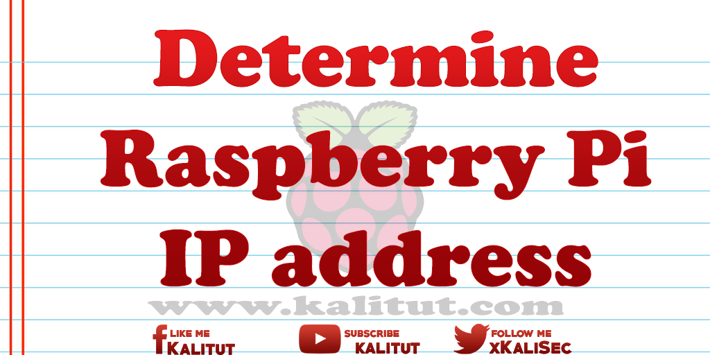 Raspberry Pi IP address
