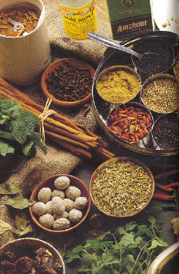 Nepali Spices English Names - We All Nepali