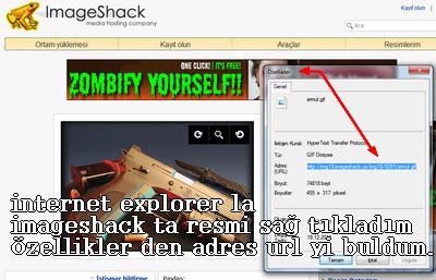 imageshack+direkt+link+alma