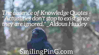 knowledge quotes in english